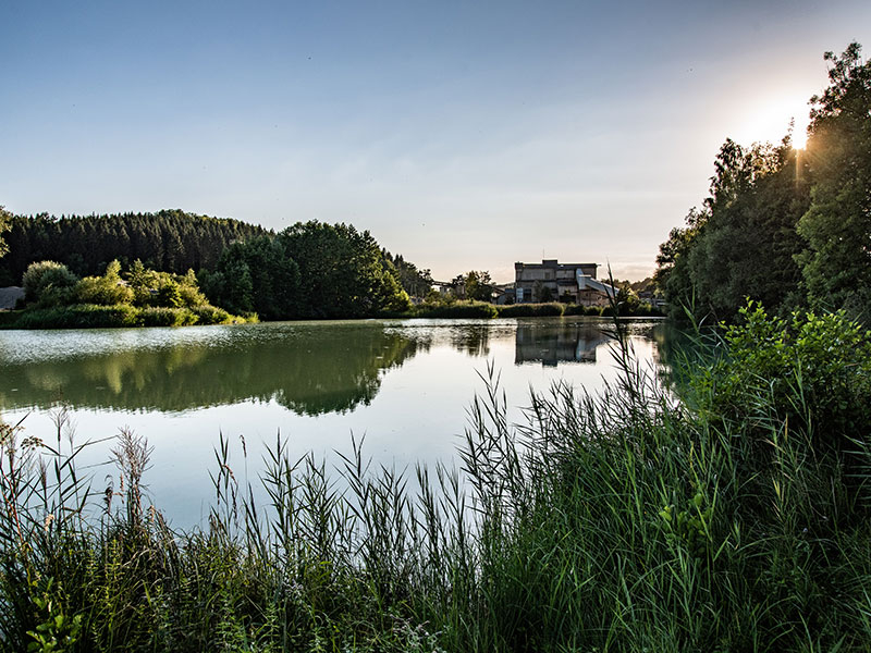 Valet u. Ott GmbH & Co. KG, Kieswerk Rulfingen Rekultivierung